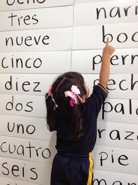 ¿Pueden los bebés aprender a leer?