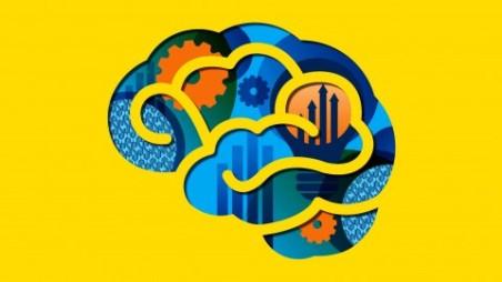 Desarrollo Neuromotor Udemy